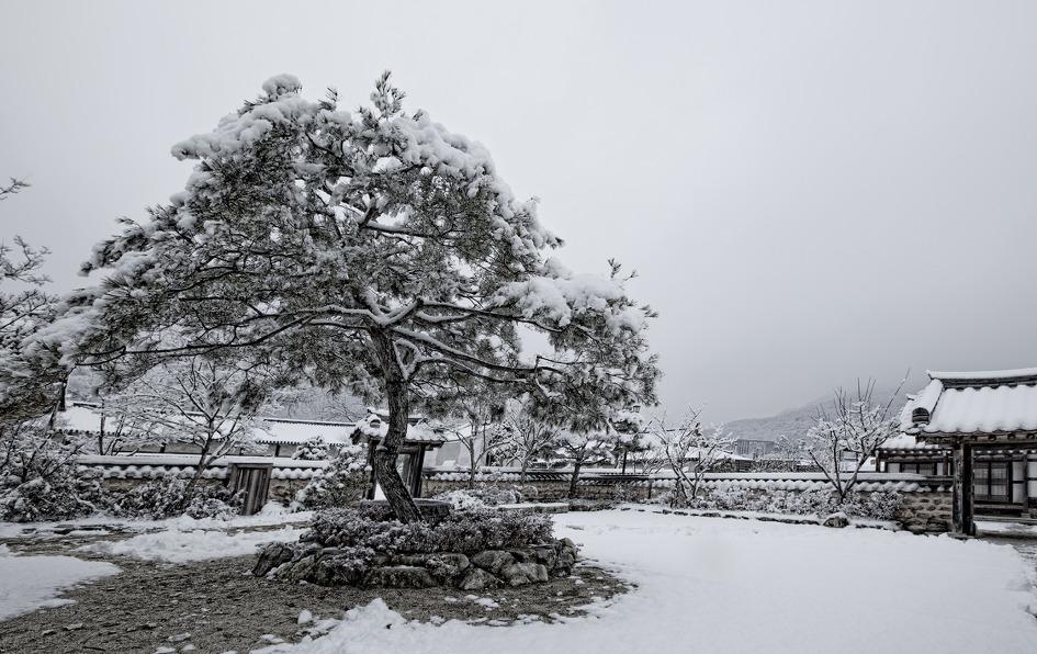 전주의 겨울은 아름답다