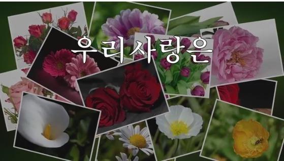 (가요)김성봉 - 우리사랑은
